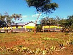 Cuento de Luz School
